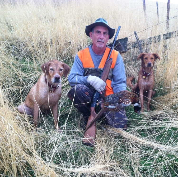 Roger displaying pheasant with his two dogs